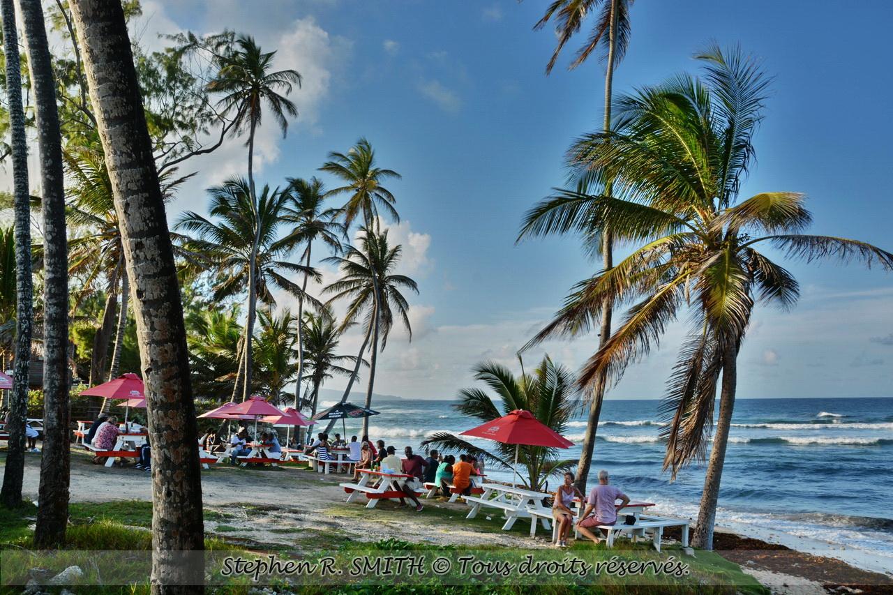 La Barbade en un clin d'oeil