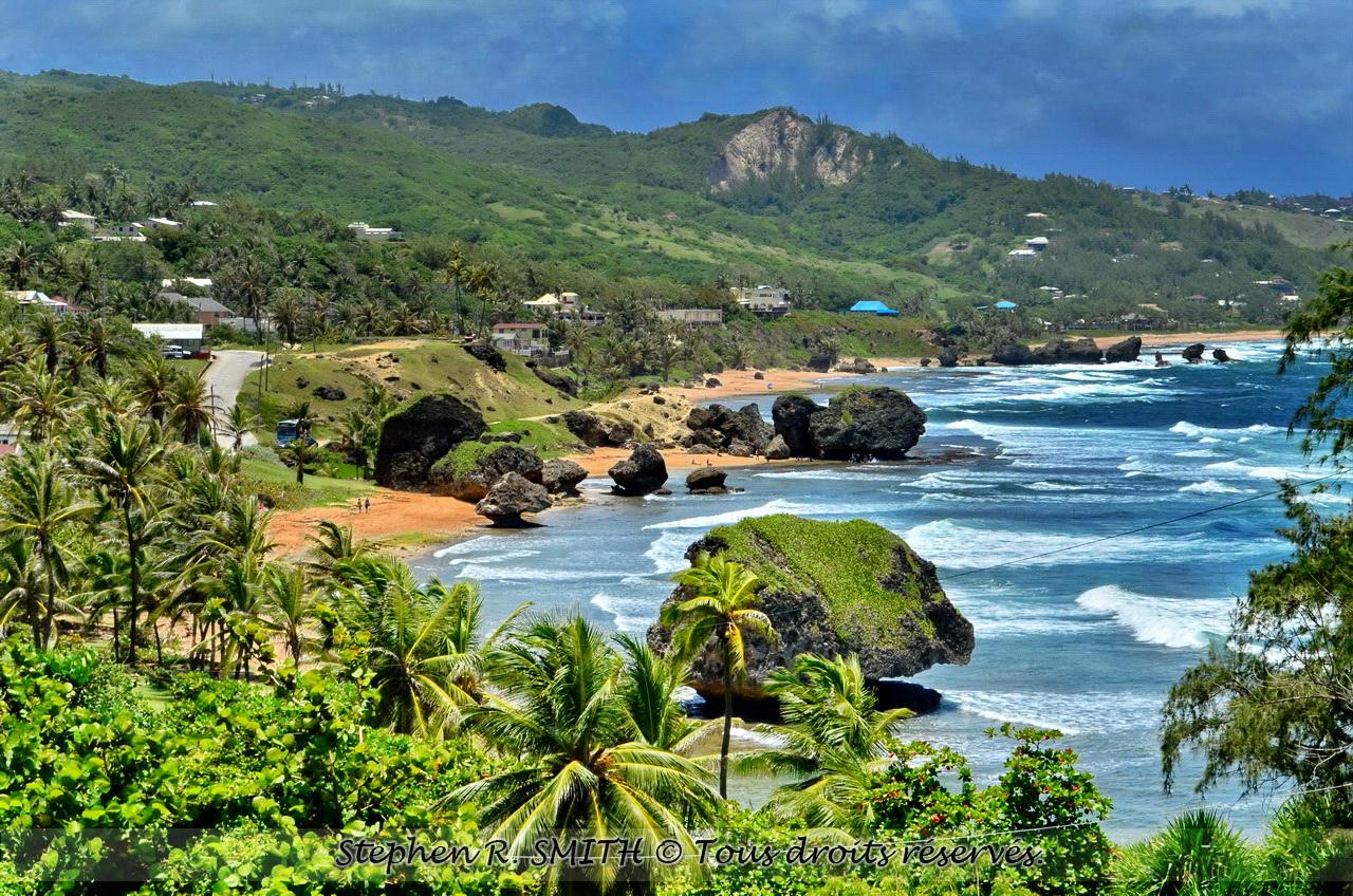 Guide définitif sur la Barbade, l'île paradisiaque.