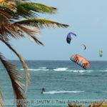 Sports nautiques à la Barbade : la mer au-dessus/dessous