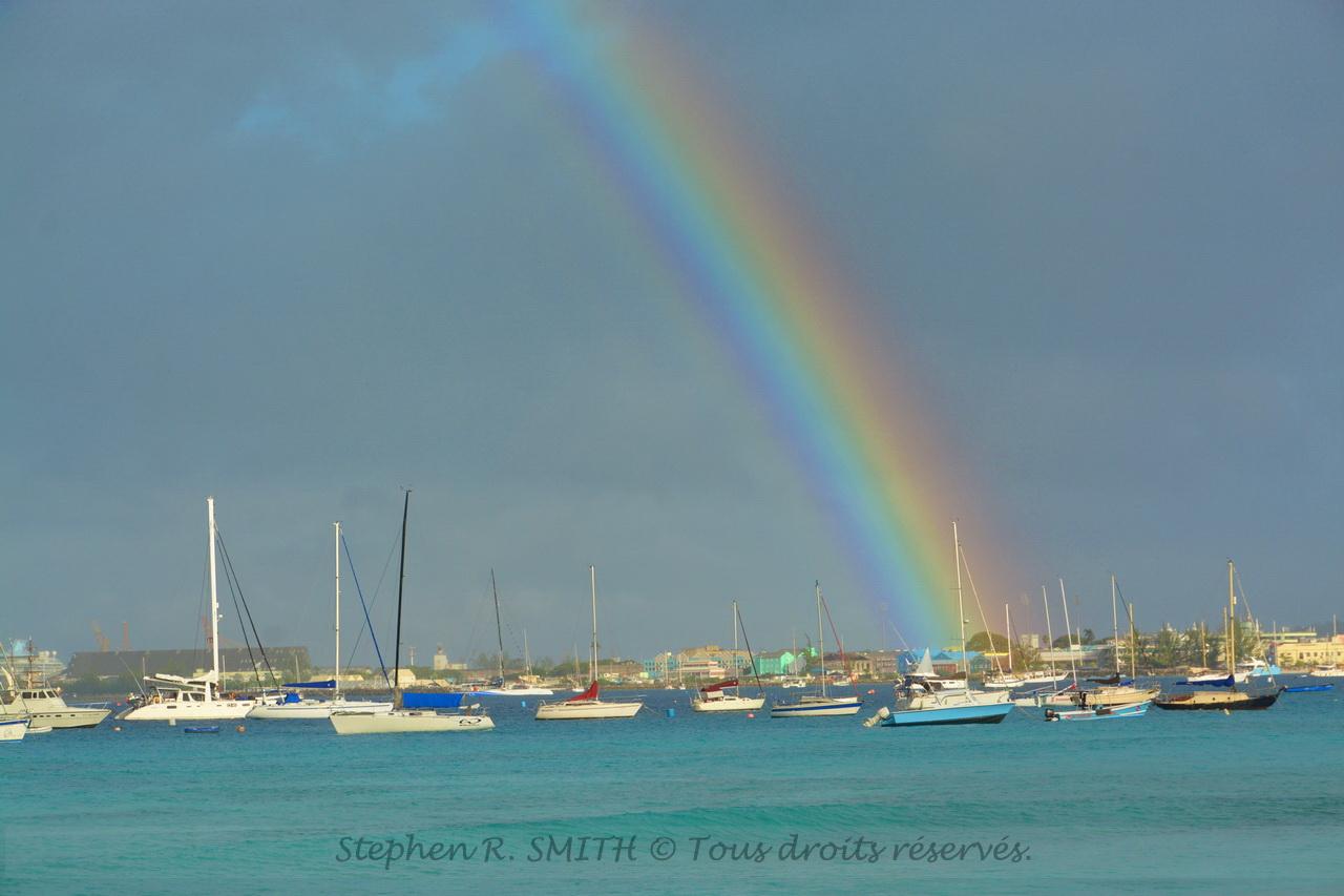 5 bonnes raisons de visiter la Barbade