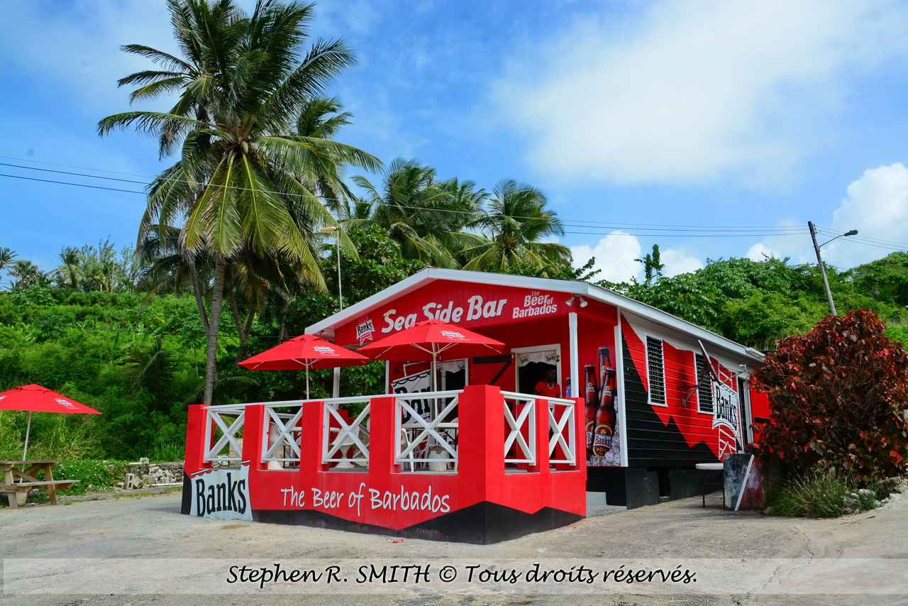 Tournée des rum shops - choses à faire en vacances à la Barbade