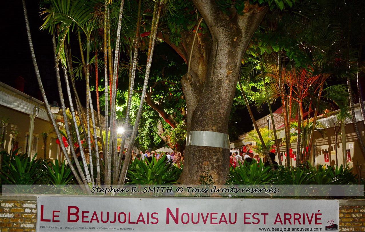 Beaujolais nouveau fêté à la Barbade - Insolite - www.labarbade.com