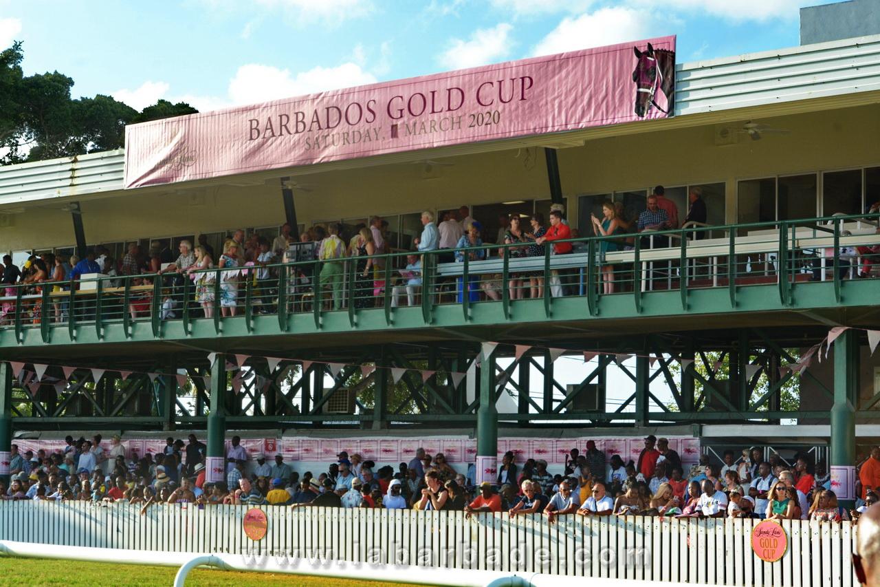 Sandy Lane Gold Cup - l'évènement hippique phare de la Barbade - www.labarbade.com