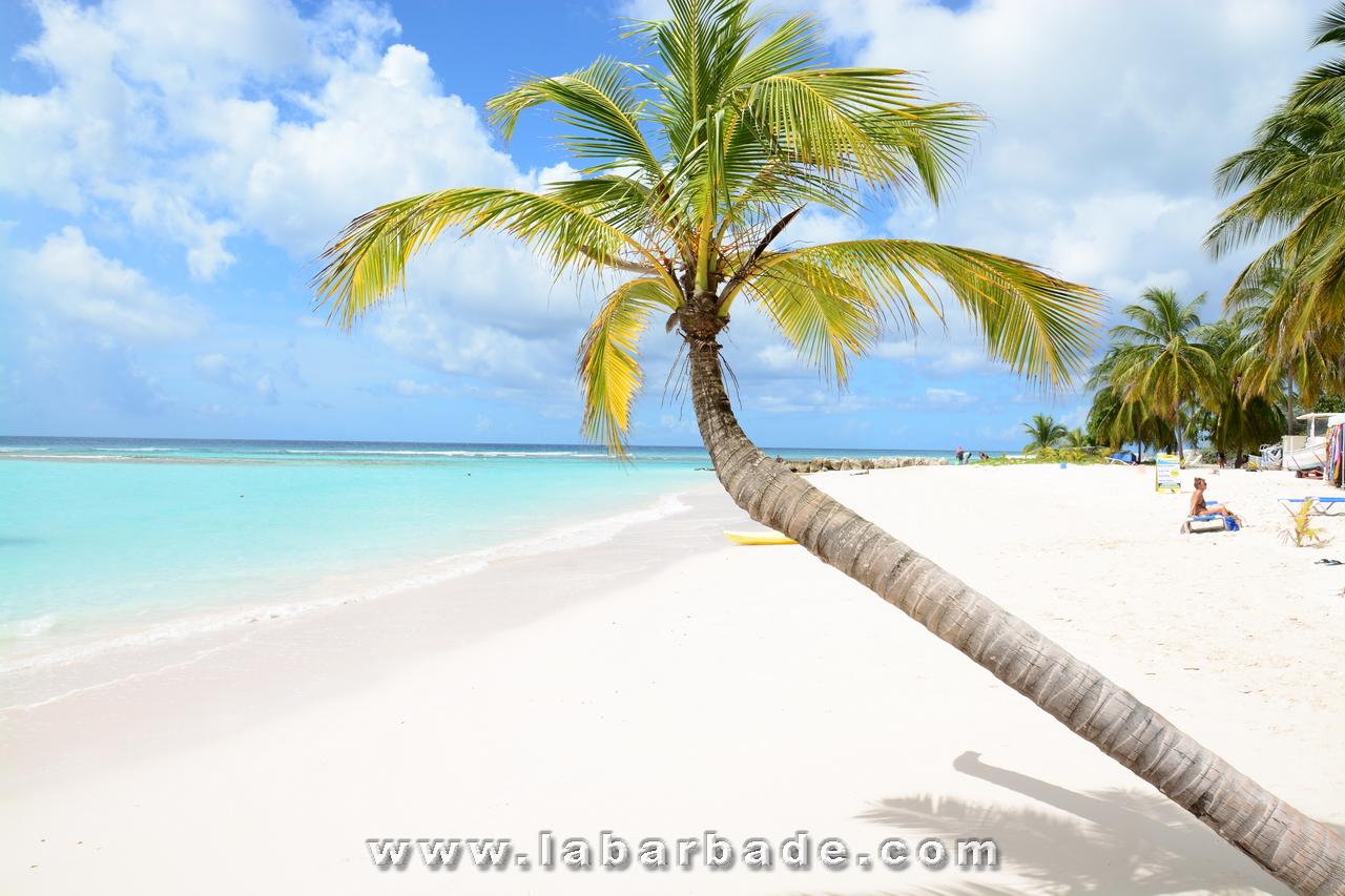 Conditions d'entrée à la Barbade